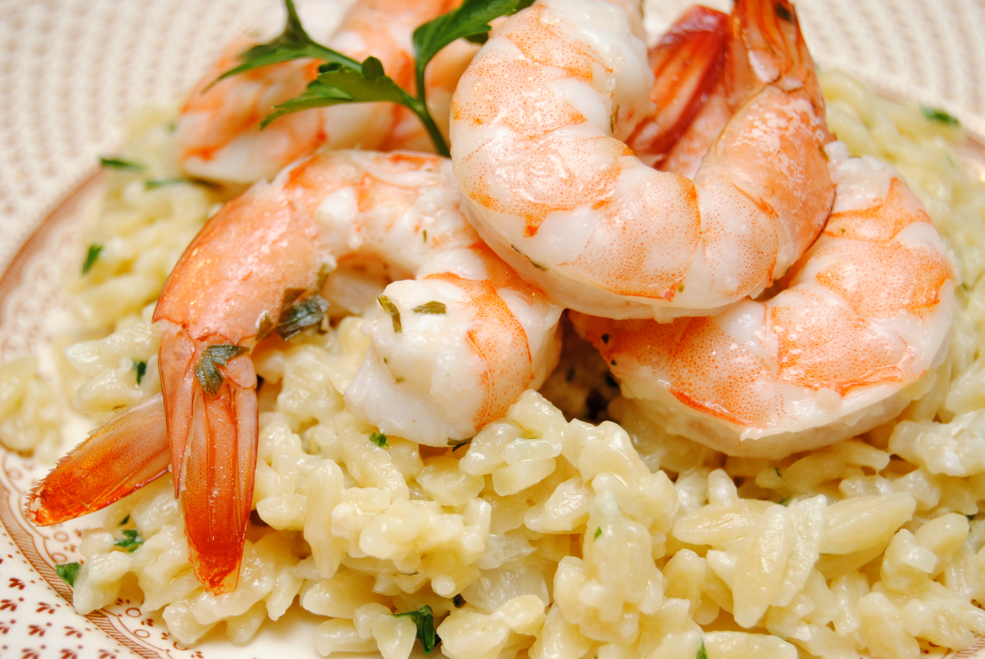 Shrimp Scampi over Creamy Parmesan Orzo | Biscuits 'n Crazy