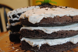 Chocolate Mint Cake 16
