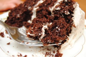 Chocolate Mint Cake14